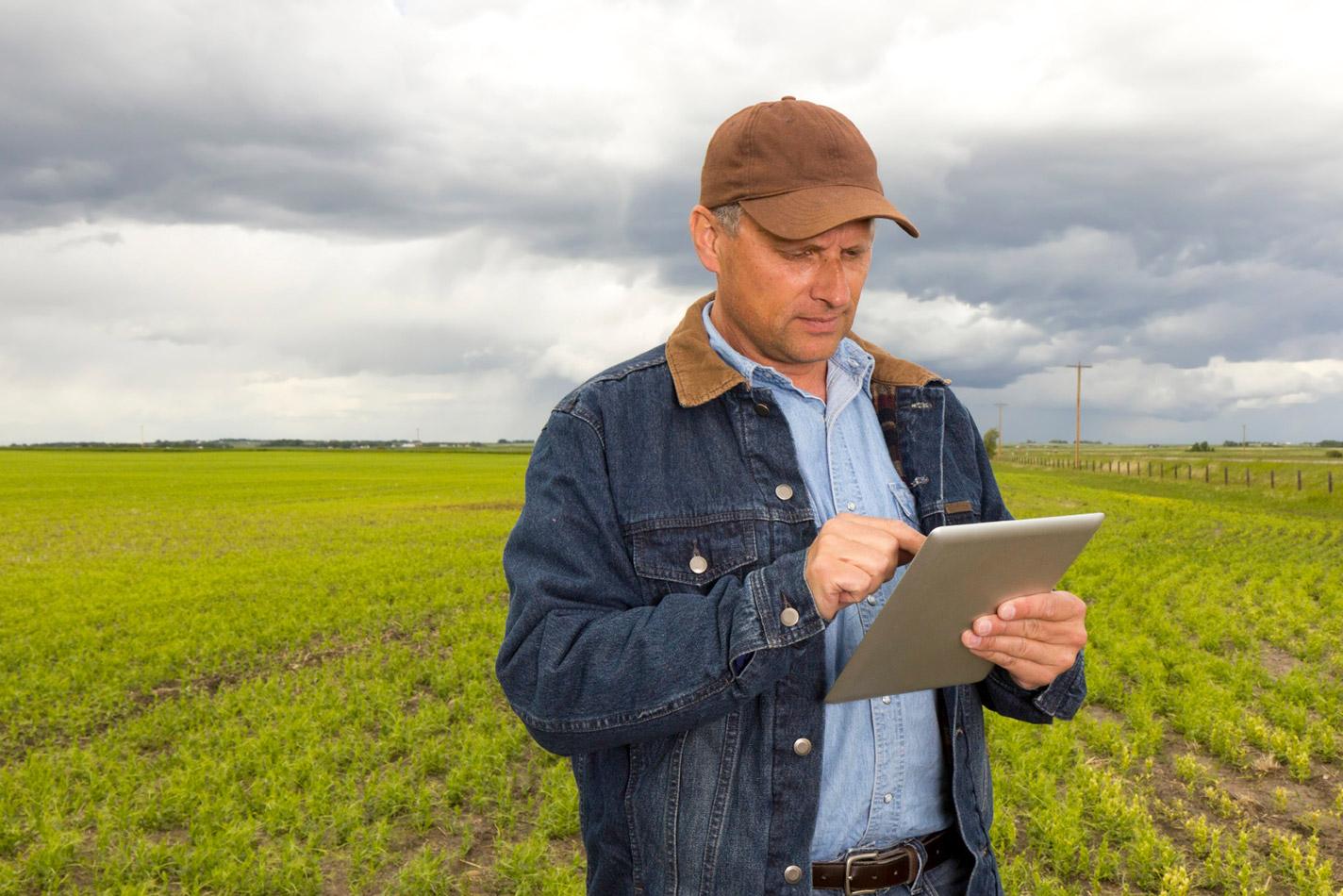 enginko_solutions_smart-agricolturejpg